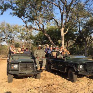 Mindful Safari 10