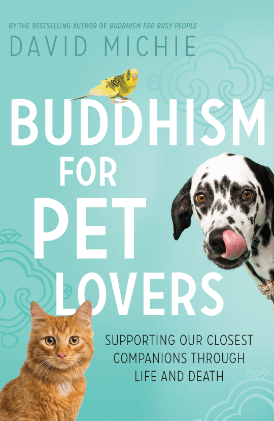 How to be with your pet during the death process: Tibetan Buddhist