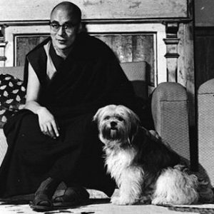 The Dalai Lama's Dog