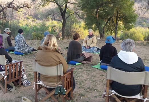 Mindful Safari 7
