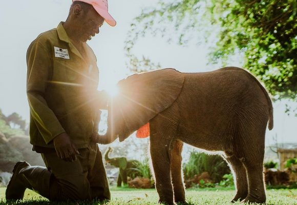 Giving to others on Mindful Safari